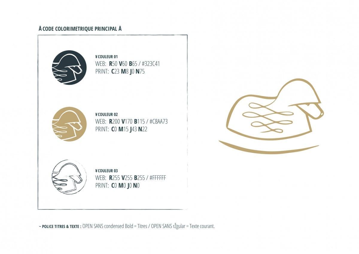 etude de cas mouton bascule charte graphique illustration 5